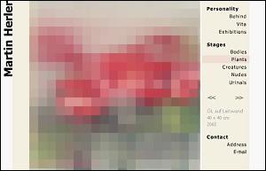 Homepage von Martin Herler