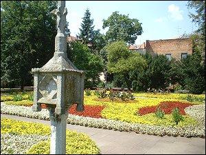Blütenpracht im Stadtpark