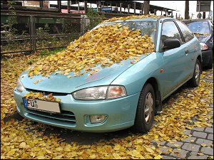 Herbstlaub auf geparktem PKW in der Karolinenstraße