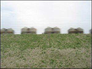Güterzug mit Silowagen für staubförmige Güter