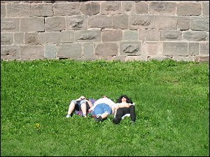 Dösende im Graben vor der Nürnberger Stadtmauer
