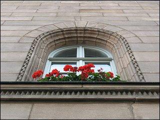 Blumenschmuck am Rathaus