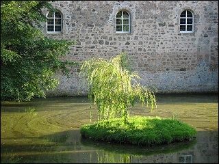 kleine Insel im Burggraben von Schloß S.