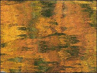 Impressionismus pur: Herbstlaub spiegelt sich im ufernahen Wasser des Möhnesees