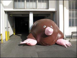 Objekt in der Nürnberger Kunstausstellung 'Tier + Mensch' im ehem. AEG-Hausgerätewerk