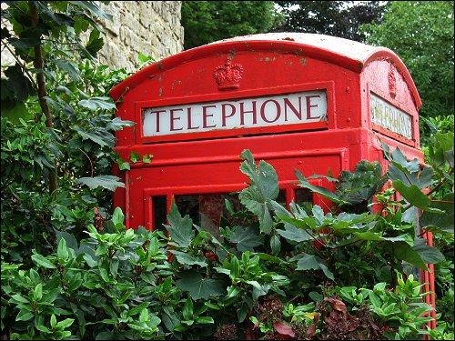 teils zugewucherte Telefonzelle Ihrer Majestät