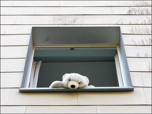 Fürther Fassade mit traurig aus dem Fenster guckendem Plüsch-Eisbär