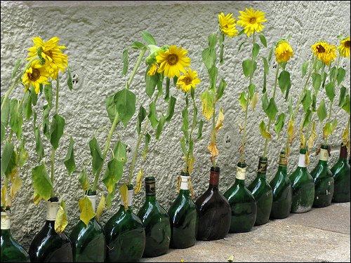 Weinflaschen zu Blumenvasen!