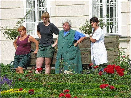 botanisches Einsatzkommando am Schloß Mirabell