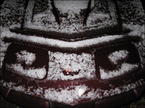 Der erste Schnee des Jahres auf den Motorhauben abgestellter Autos