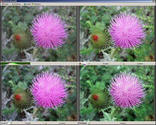 Mehrfachautomatik zur Bildoptimierung in FixFoto