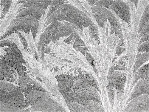 Eisblumen auf Scheunenfenster