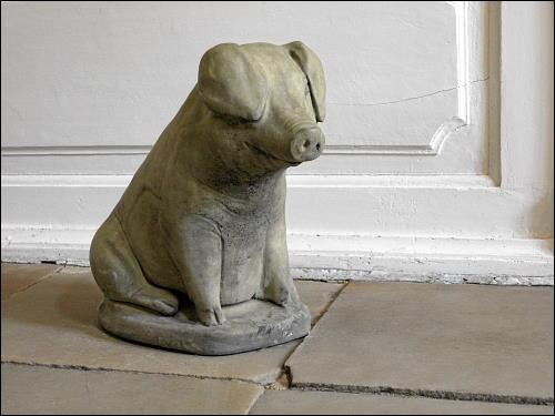 stubenreines Hausschwein auf Schloß Essenrode