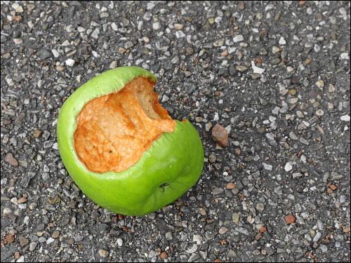 teilweise verzehrter Apfel