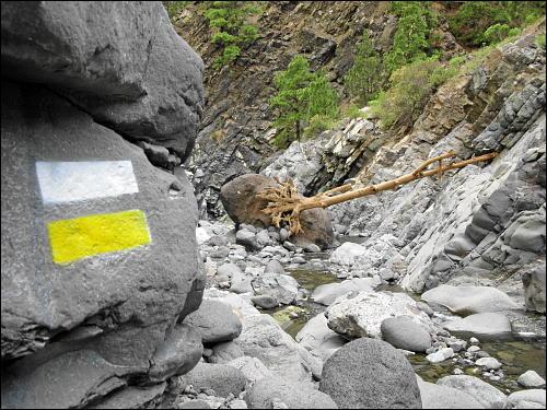 auf dem steinigen Weg aus der Caldera de Taburiente