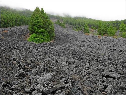 Weiße Wolken wabern über Wälder und Lavafelder