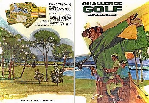 Challenge Golf-Schuber