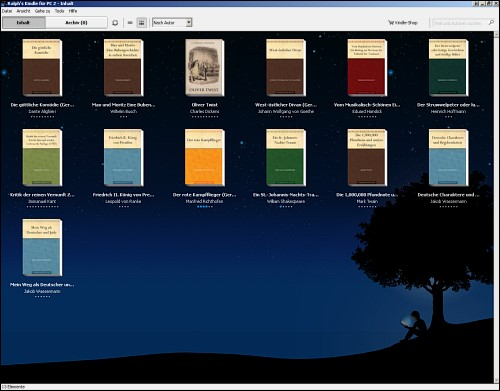 Screenshot der Kindle-Applikation für den PC
