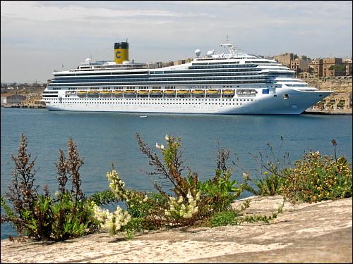 großes Kreuzfahrtschiff im Hafen von Valletta