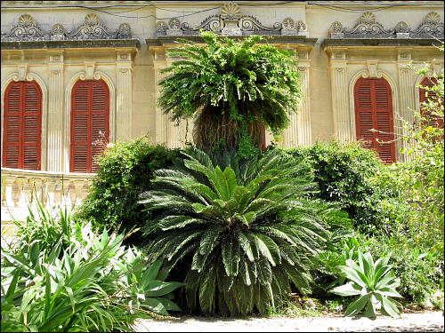 noble Villa in Attard