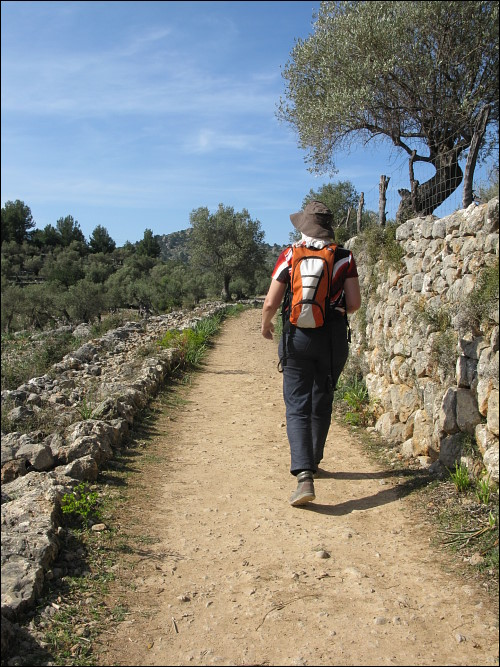Auf dem Weg durch Felder und Olivenhaine