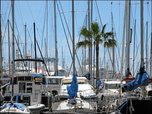 Boote, Boote, Boote im Hafen von Palma de Mallorca