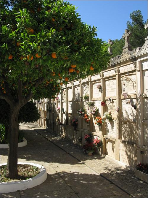 im Friedhof von Andratx
