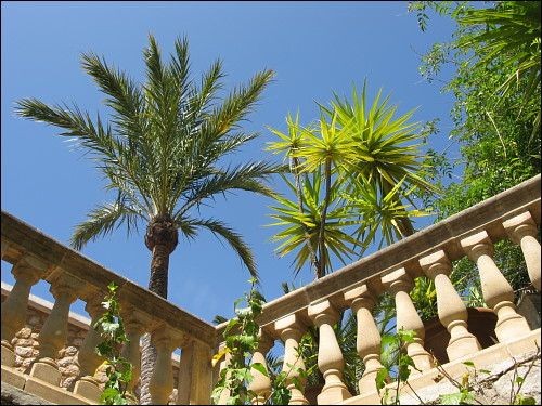 palmengesäumte Balustrade in Biniaraix