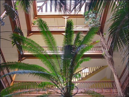 Die Palmenhalle des Hotel Monopol