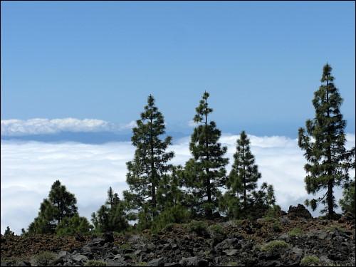 grandiose Aussicht von Montaña Samara aus