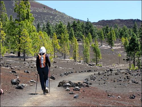Rundweg um den Vulkankrater