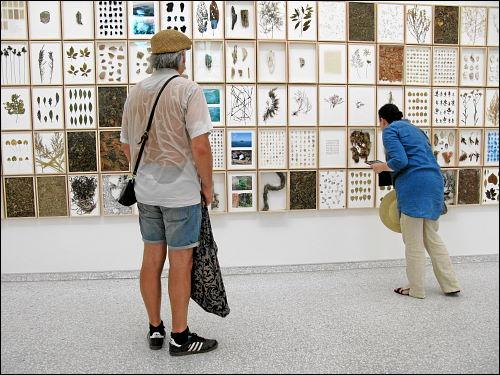 Impressionen aus Venedig und von der Kunst-Biennale 2015