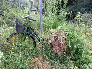 Fahrrad in Regensburg-Prüfening