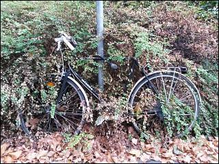 Fahrrad in Fürth (Bay)
