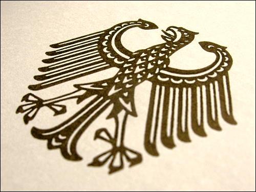 skelettierter Vogel auf gelber Pappe