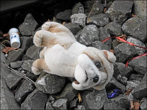 verstoßener Plüschhund, im Bahngleisschotter liegend