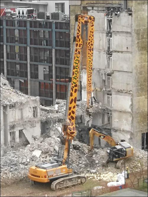 Abbruchbagger im Giraffen-Design