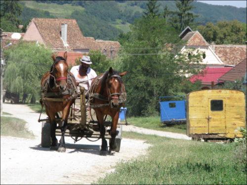 Pferdefuhrwerk am Ortsrand von Biertan (Bierthälm)