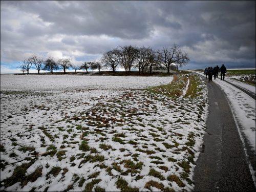 Winterliche Wanderung rund um die »Jägersburg« bei Bammersdorf