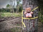 grausam gefolterter Teddybär im Wald bei Finspång/Südschweden