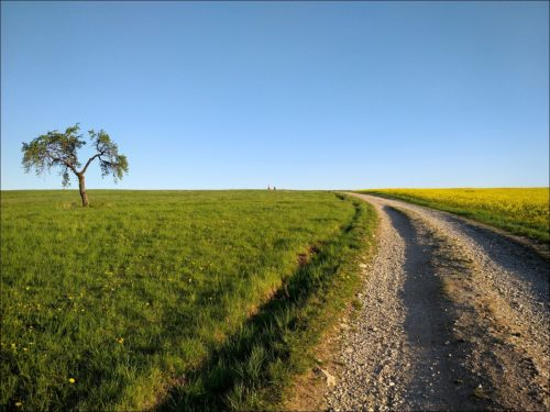 Feldweg bei Kirchröttenbach