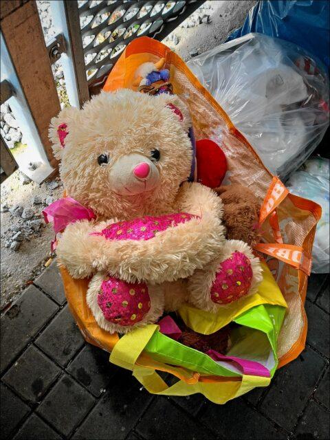 Im nachbarschaftlichen Müllhaus mit allerlei Hausrat ausgesetzte Teddybärin