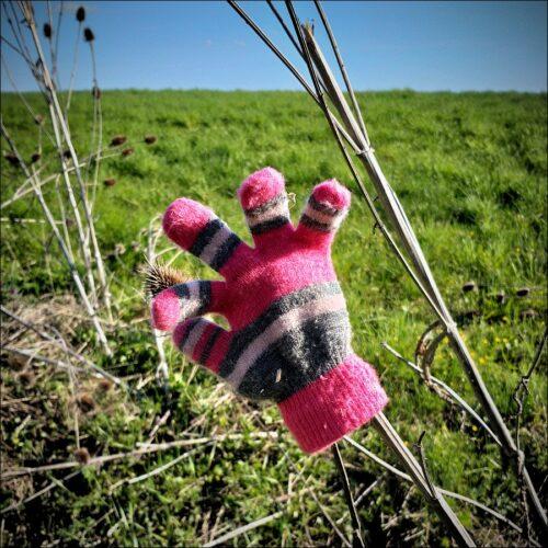 Verlorener Handschuh am Wegesrand
